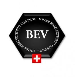 Certificat en Bioélectronique Vincent